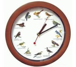 Оригинальные часы - Птичьи трели