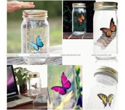 Бабочка в банке Электронная